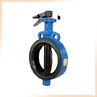 Butterfly Valve Diaphragm